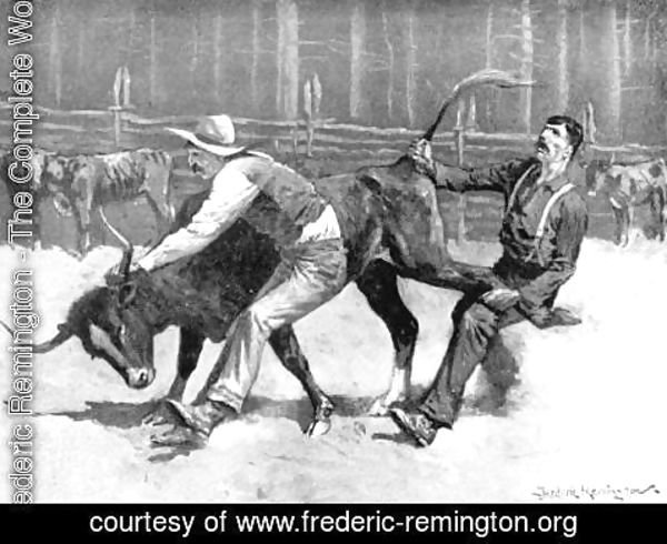 Frederic Remington - Cowboys wrestling a bull